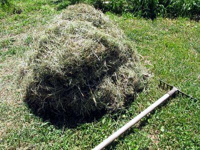 Заготовка сена