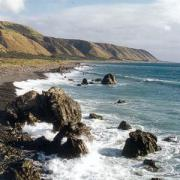 Новая Зеландия - вид на океан