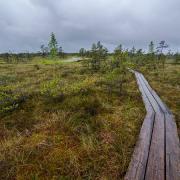 Национальный парк «Кемери» (недалеко от Риги)