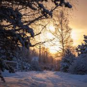 Зимний репортаж
