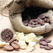 От какао-бобов до шоколада